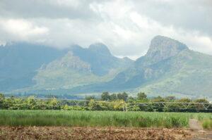 Die beste Reisezeit für Mauritius ist das ganze Jahr